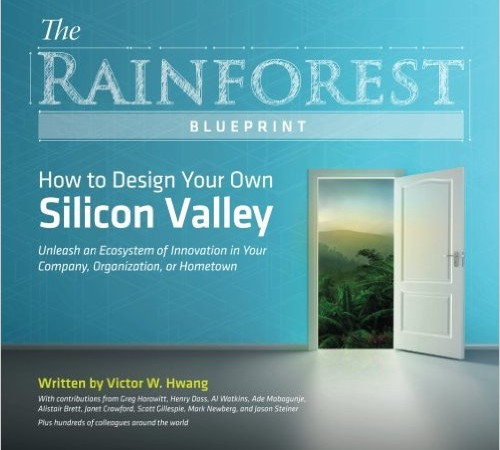 Creating successful innovation ecosystems – the rainforest analogy